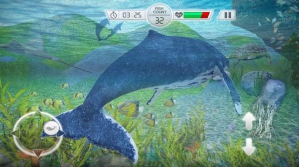 天天养鲸鱼红包版