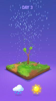 小树成长记