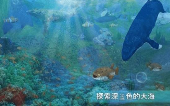 全民养金鱼