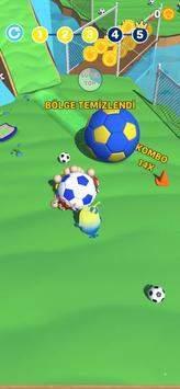 小鸟踢足球